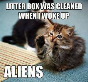 cat-litter-aliens