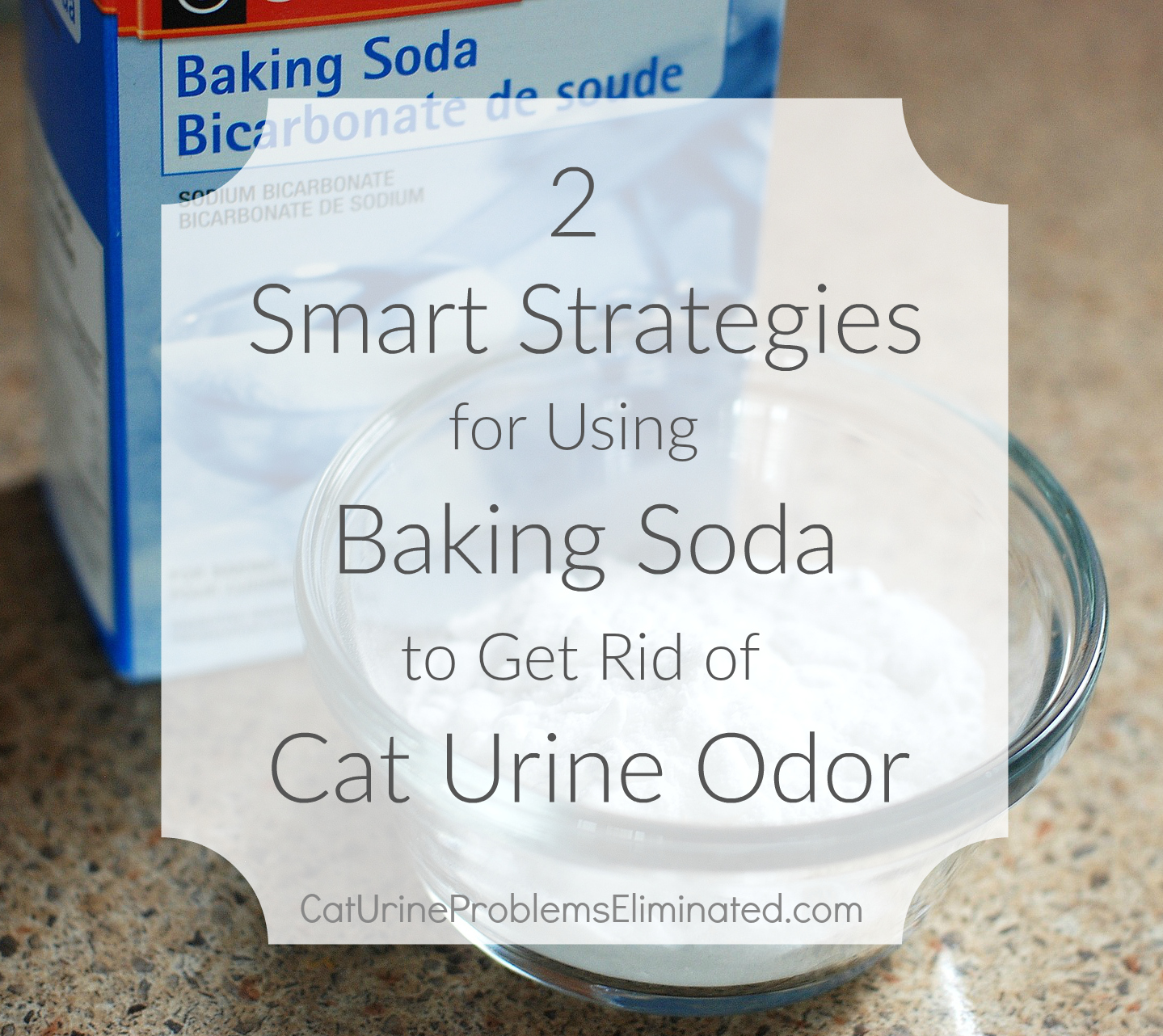 Baking Soda To Get Rid Of Smell Tips On Using Baking Soda For Cat Urine Odor Removal  Cat Urine