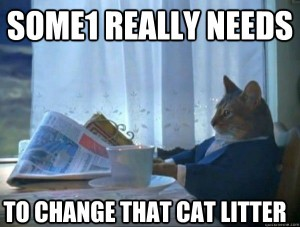 Change that cat litter!